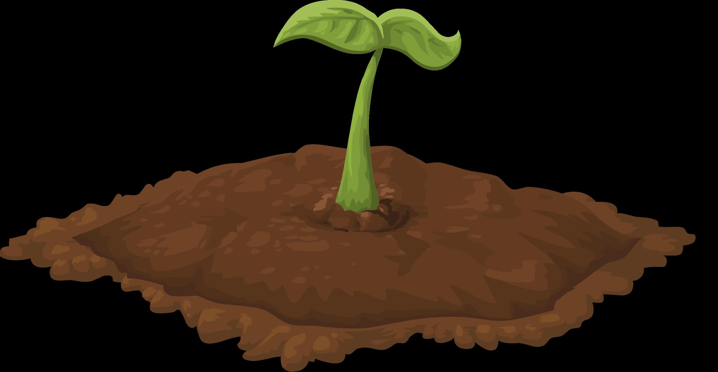 Plant Clip Dirt Clipart.