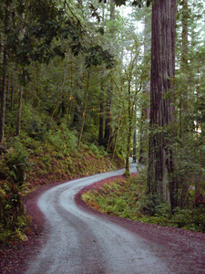Dirt Road Photo Clipart Image.