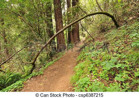 Dirt Trail Clipart.