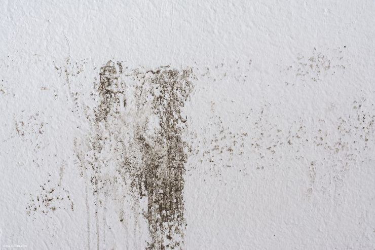 Dirty wall texture 0119.