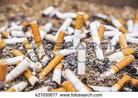 Picture of Cigarette butts discarded in ashtray k21035677.