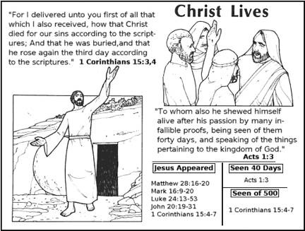 17 Best images about Bible class Jesus on Pinterest.