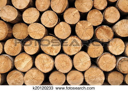 Stock Photo of Big wall of stacked wood logs showing natural.