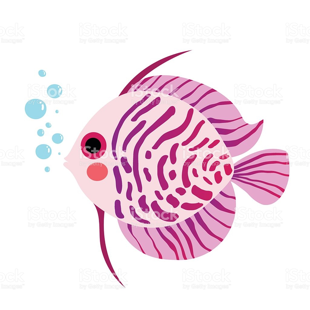 Discus Fish Animal Cartoon Character Vector Illustration stock.