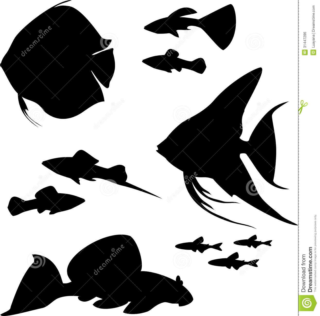 Discus Fish Clip Art.