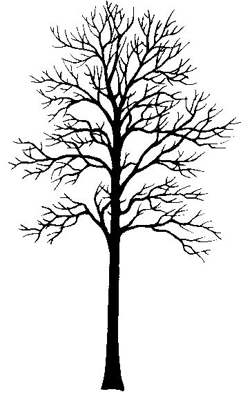 17 Best ideas about Tree Clipart on Pinterest.