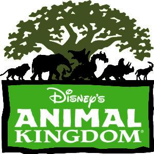 Disney\'s Animal Kingdom.