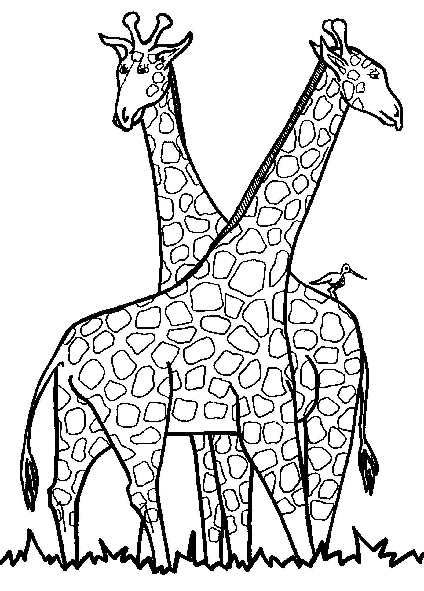 Giraffe Black And Whiote Drawing For Children Printable.