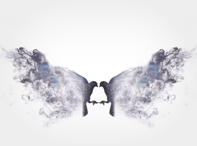 doubleexposure dispersion distortion smoke butterfly.
