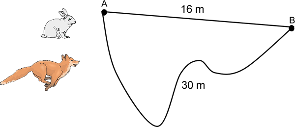 Position, Distance, and Displacement.
