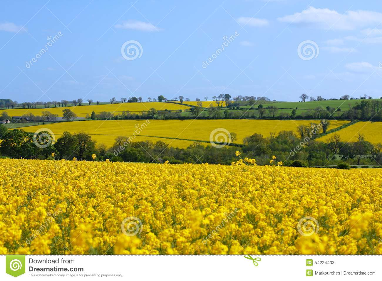 Blue Sky, Green Fields And Distant Hills Stock Photo.