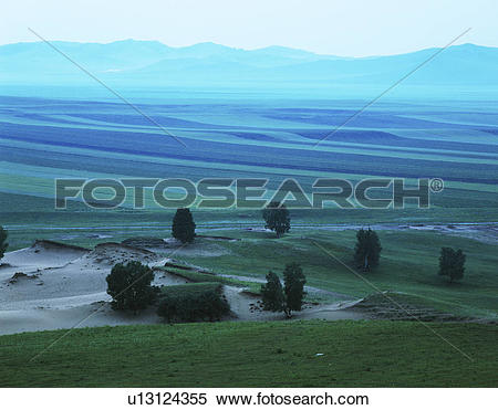 Stock Image of Overview of bushes and distant mountain range.