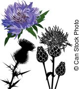 Thistle Vector Clip Art Illustrations. 265 Thistle clipart EPS.