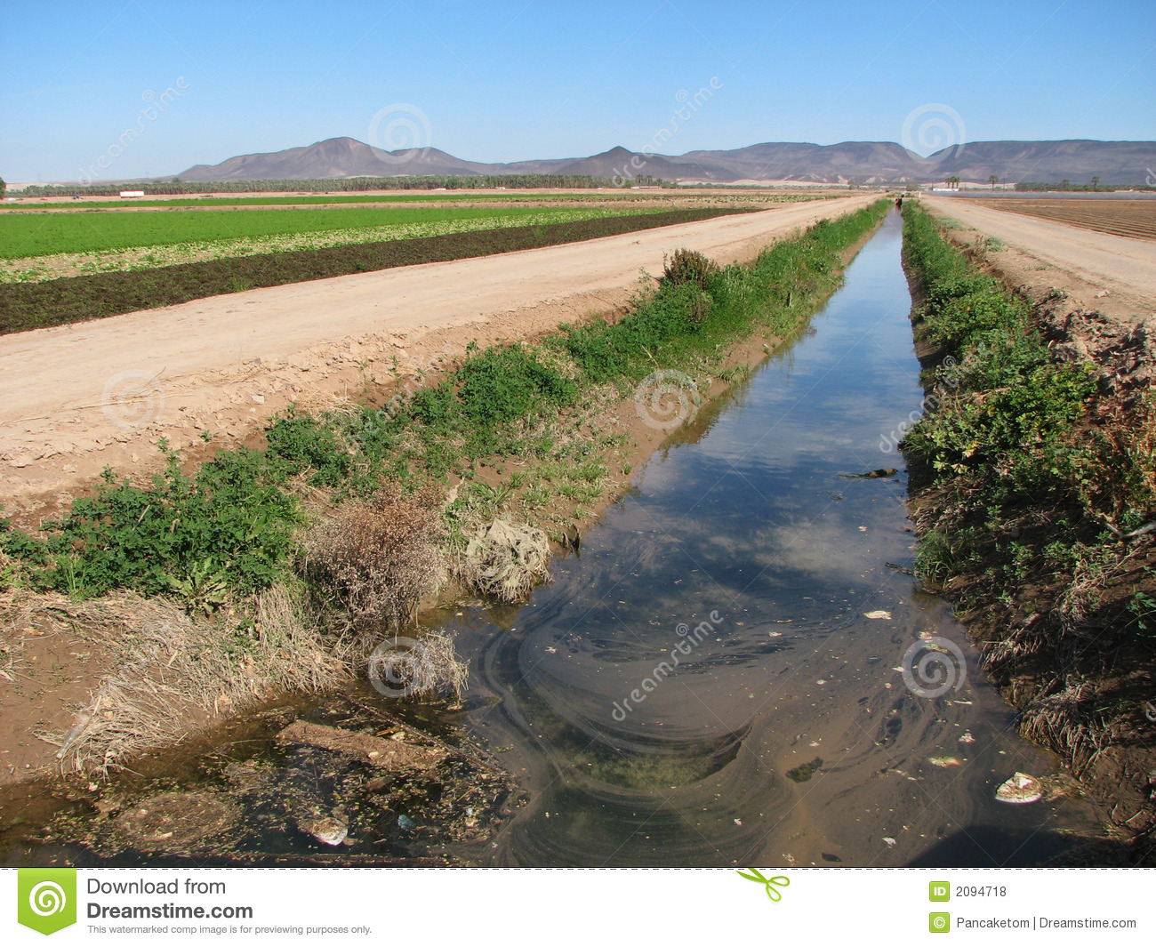 Dirty Irrigation Ditch Royalty Free Stock Photos.