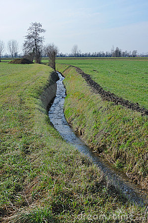 A Small Ditch Reflecting The Blue Sky Stock Photo.