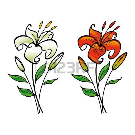 Tiger Lily Stock Photos Images. Royalty Free Tiger Lily Images And.