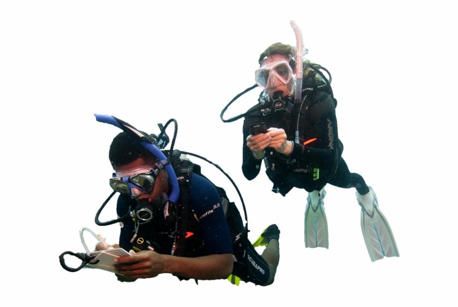 Become A Padi Diver.