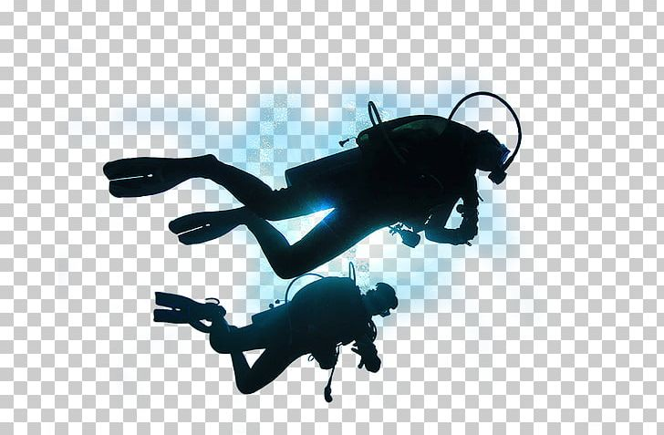 Diver PNG, Clipart, Diver Free PNG Download.