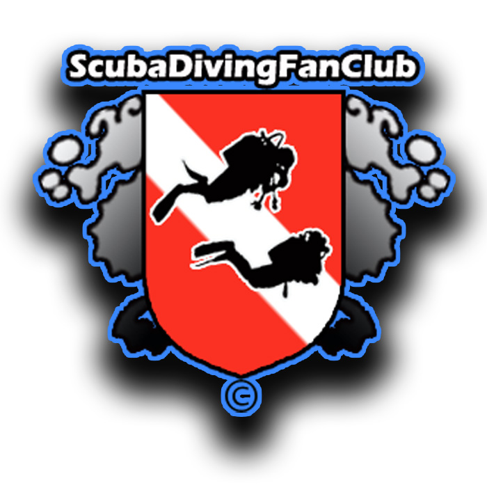Our Diving Logos.