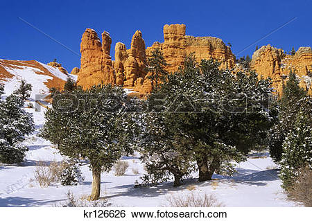 Stock Images of panguitch, ut red canyon dixie national forest.