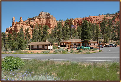 Dixie National Forest.