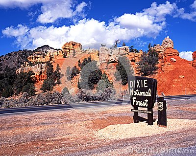 Dixie National Forest Royalty Free Stock Images.