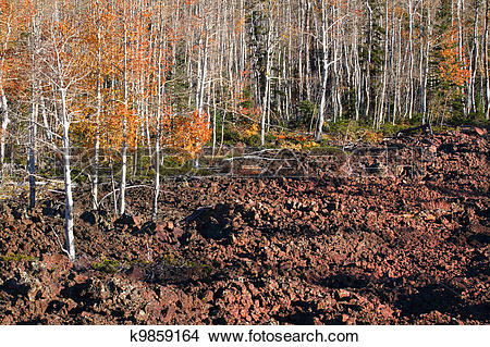 Stock Photo of Dixie National Forest Lava Field k9859164.