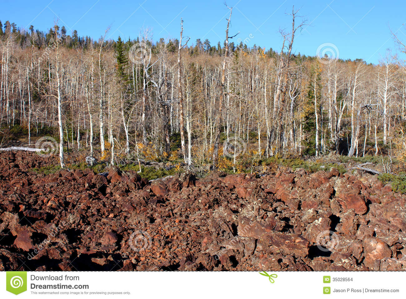 Dixie National Forest Lava Field Stock Images.
