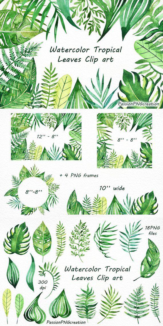 Watercolor Tropical Leaves Clip art, Handpainted clipart, PNG, diy.
