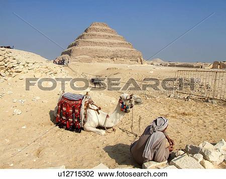 Stock Photo of Egypt, Saqqara, Djoser's, Step, Pyramid, Camel.