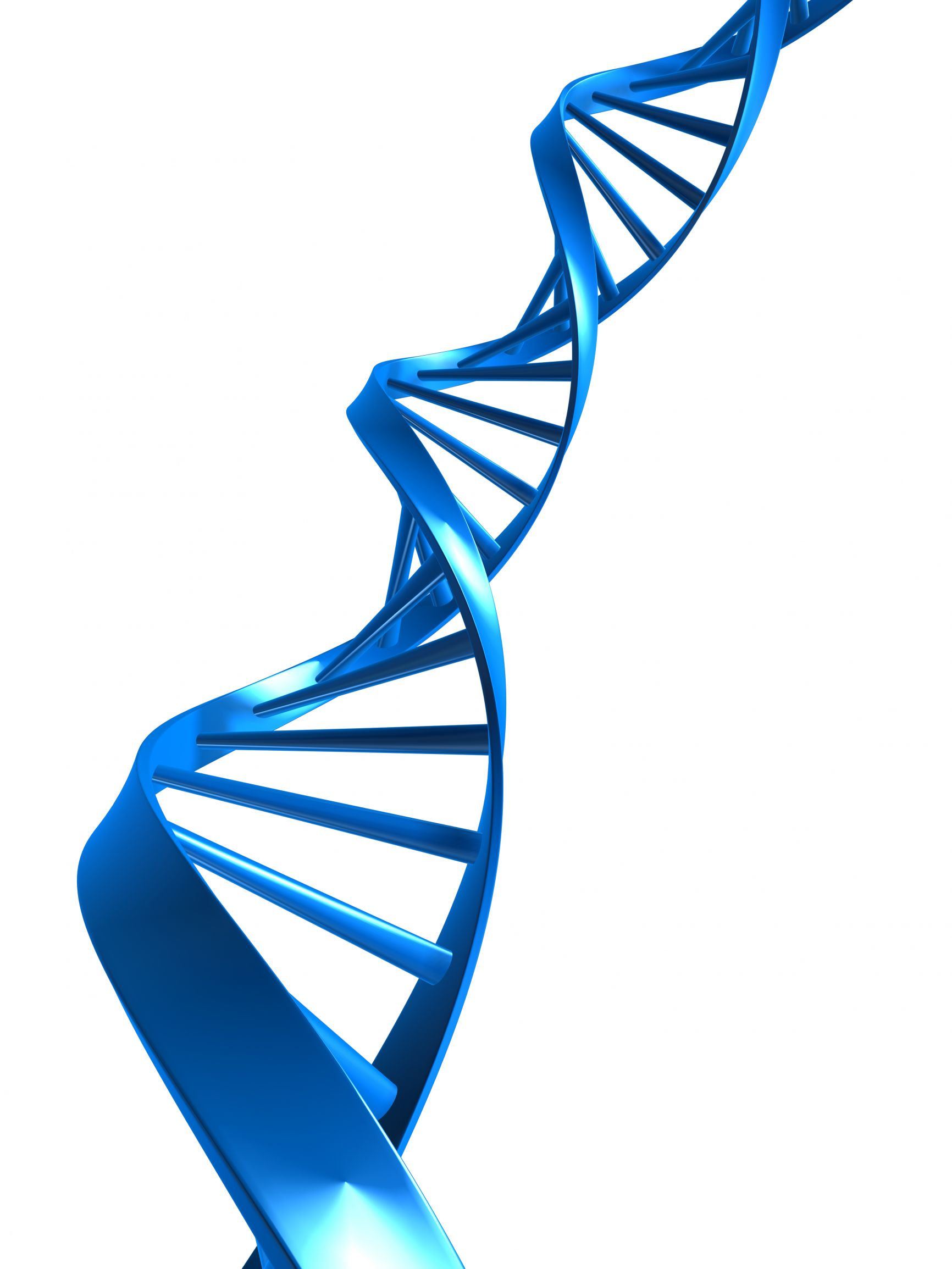 Free Dna Helix Clipart, Download Free Clip Art, Free Clip Art on.