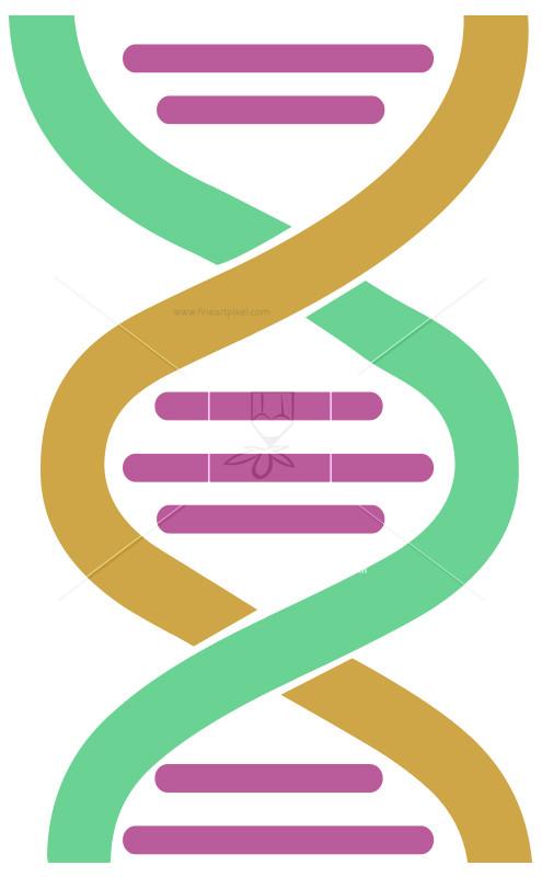 DNA Code.