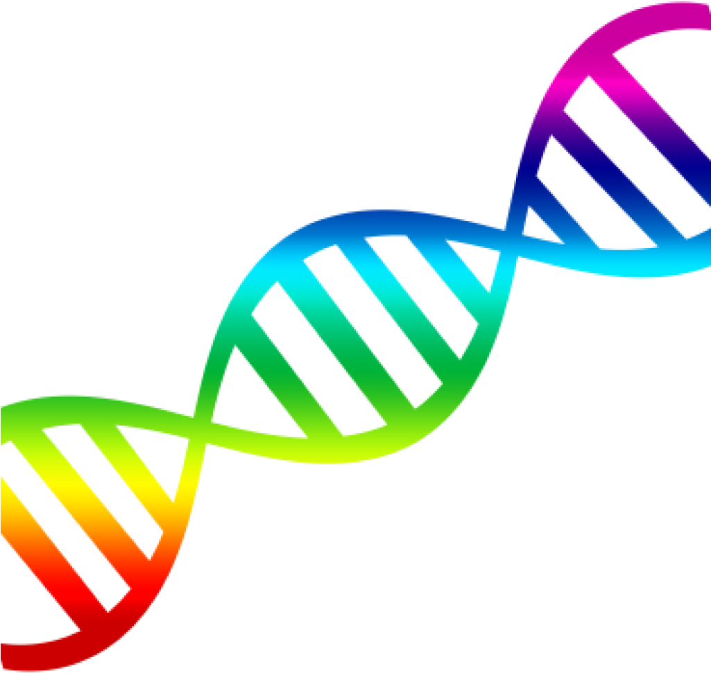 Temporary Collection Of Free Vector Dna Graphic Art.