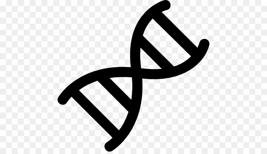 Dna Symbol PNG Dna Nucleic Acid Double Helix Clipart download.