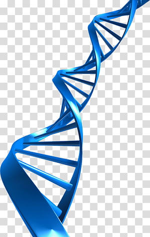 The Double Helix: A Personal Account of the Discovery of the.