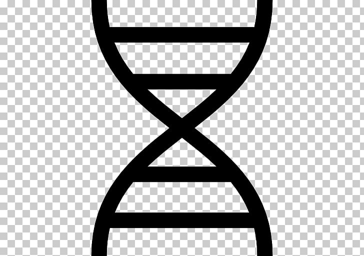 Nucleic acid double helix DNA , others PNG clipart.