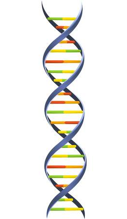 38,168 Dna Helix Stock Vector Illustration And Royalty Free Dna.