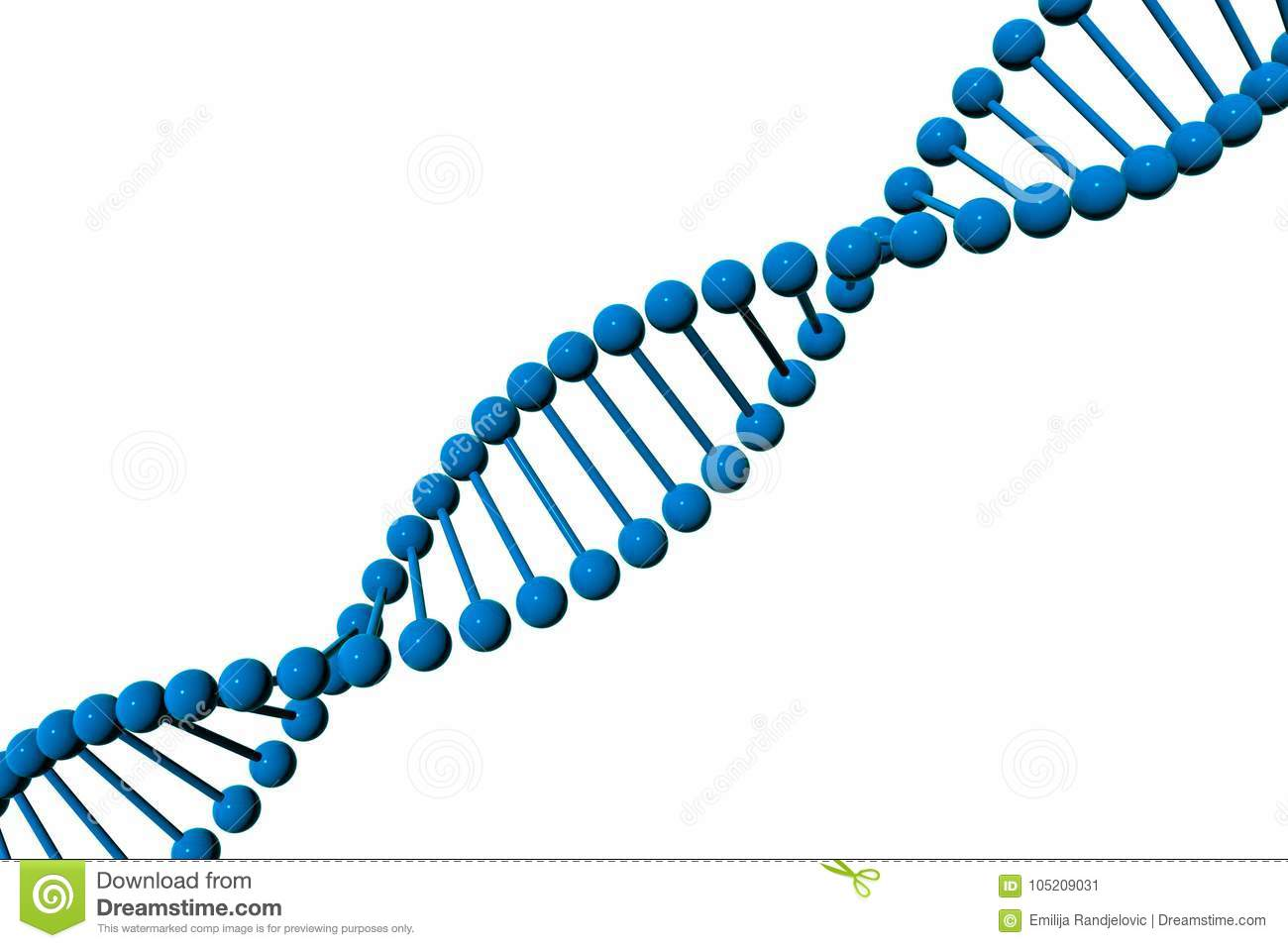 DNA Molecule 3D Model Isolated On White Background Stock.