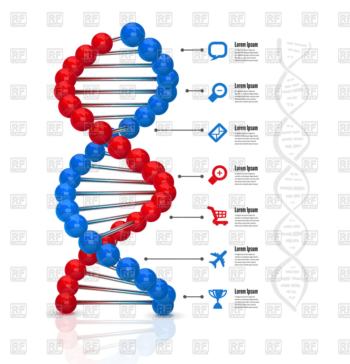 DNA molecule infographics Stock Vector Image.