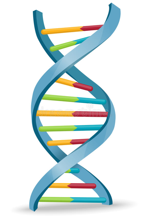 Dna Stock Illustrations.