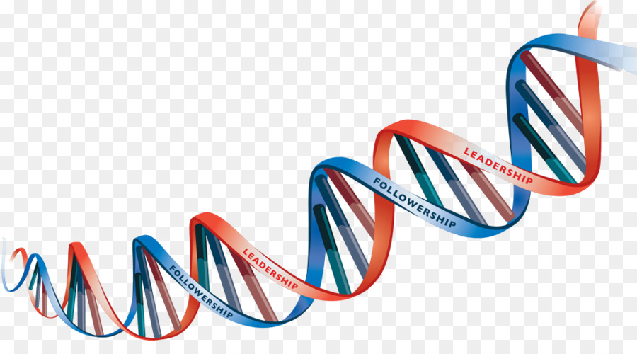 Dna Text png download.