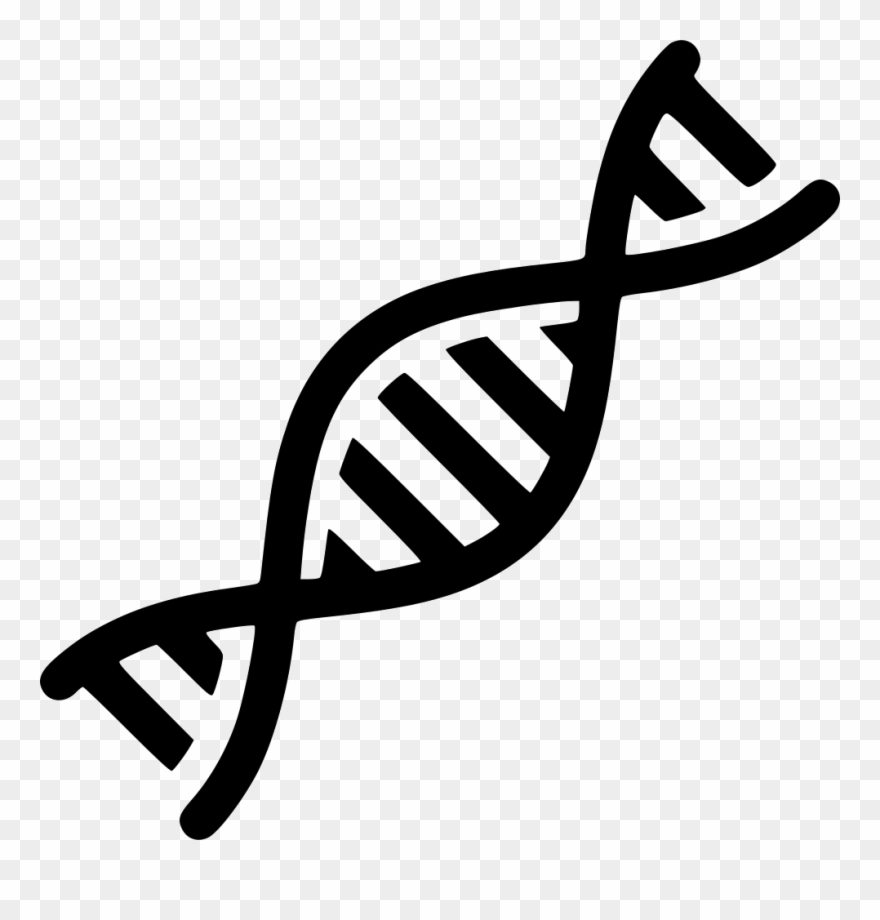 Png Dna Vector Freeuse.