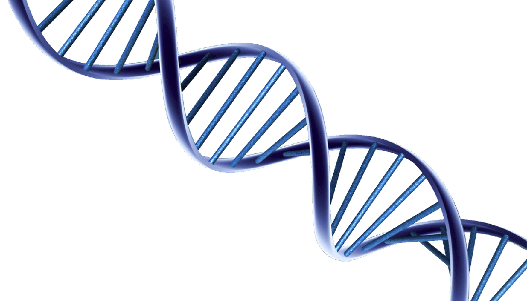 DNA PNG Photo.