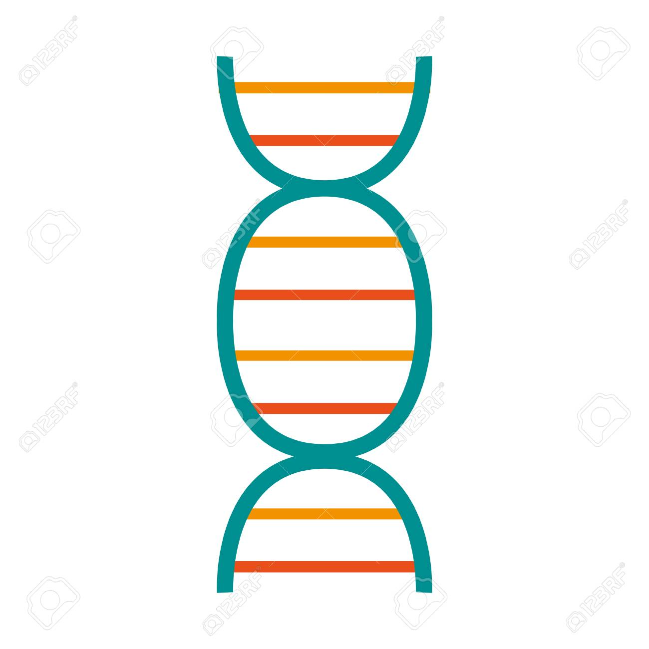 dna strand icon image vector illustration design.