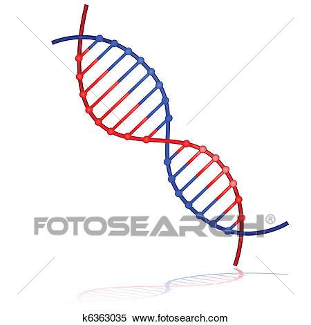 DNA strand Clipart.