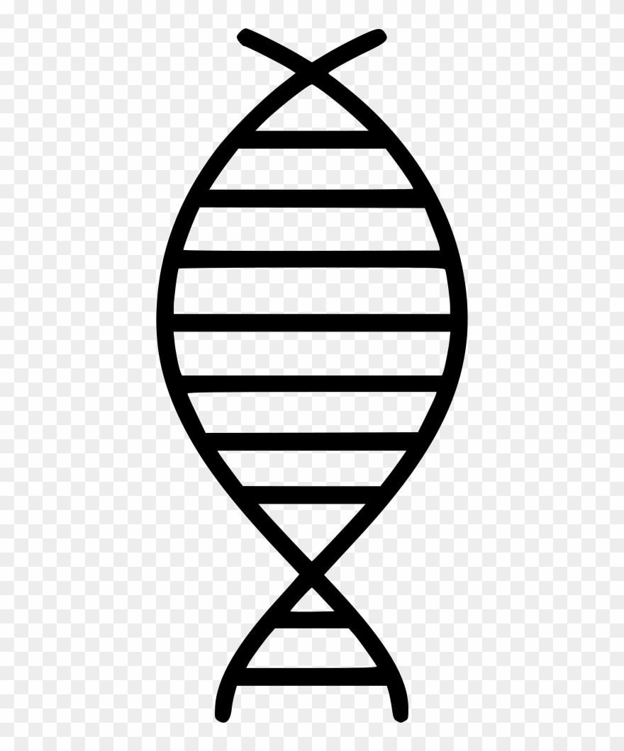 Dna Strand Comments.