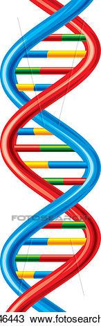 Vector DNA strand Clipart.