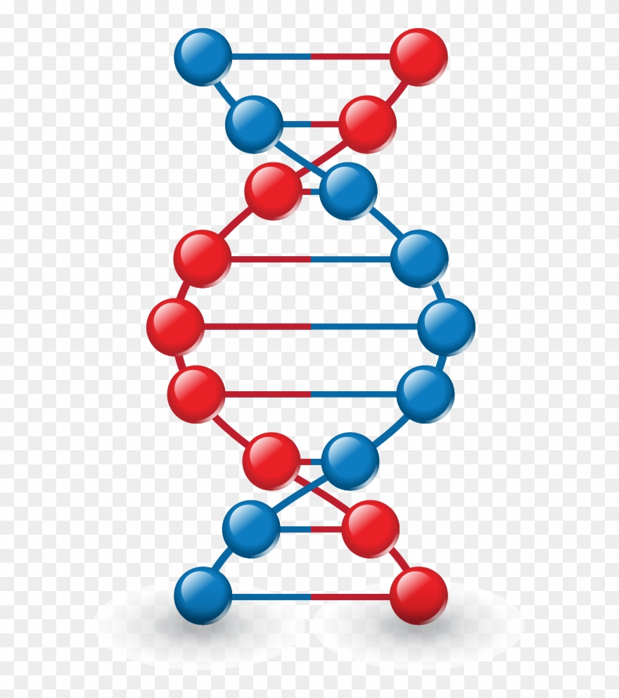 Png Images, Pngs, Dna, Dna Strand, Forensics, (id 37026).
