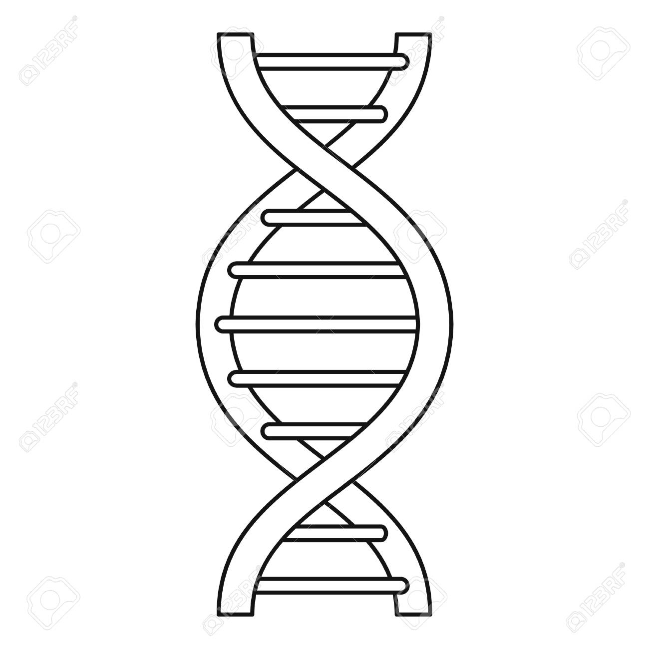 DNA strand icon, outline style.