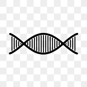 Dna Strand Png, Vector, PSD, and Clipart With Transparent Background.